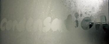 dehumidifier vs exhaust fan