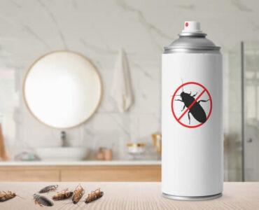 bathroom cockroaches